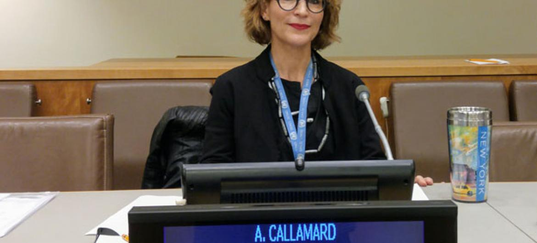 Agnes Callamard pediu à comunidade internacional que apoie o processo de transição jurídica no Iraque. Foto: ONU/: Elizabeth Scaffidi.