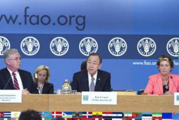 Ban Ki-moon discursa no Comité Mundial de Segurança Alimentar. Foto: ONU