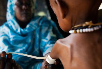 Piores níveis de insegurança alimentar no Sudão do Sul. Foto: ONU/Albert González Farran