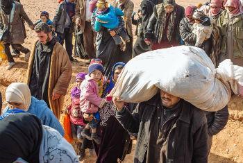 Refugiados sírios procuram abrigo em países vizinhos. Foto: Acnur/J. Kohler