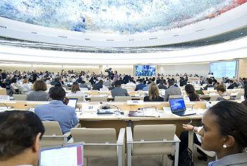 Conselho dos Direitos Humanos. Foto: ONU/Violaine Martin