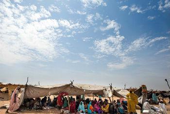 Acampamento de deslocados na área de Kalma. Foto: Unamid/Albert Gonzalez Farran