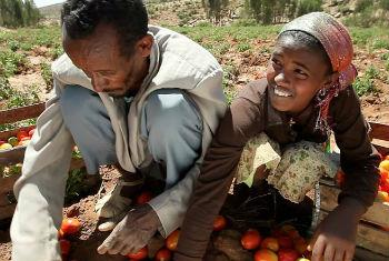 Financiamento para o Corno de África. Foto: Banco Mundial