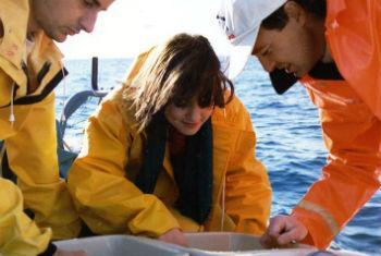 Técnicas podem ajudar na proteção ambiental. Foto: Aiea