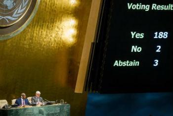 Votação na Assembleia Geral. Foto: ONU/Loey Felipe