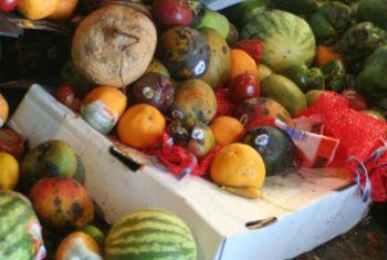 Desperdício de comida. Foto: FAO