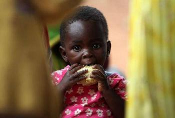 Alimentação das crianças é prioridade. Foto: FAO