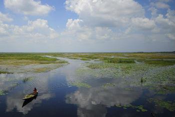 Iniciativa procura beneficiar a biodiversidade. Foto: FAO