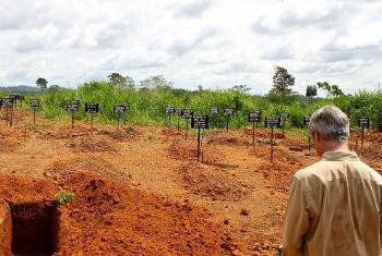 Banburry em visita a cemitério com vítimas do ebola. Foto: Unmeer