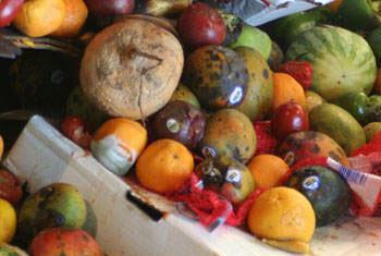 Segundo a FAO, consumidores com maior poder de compra desperdiçam 222 milhões de toneladas de alimentos por ano.Foto: FAO