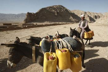 Combate à pobreza no Afeganistão. Foto: Banco Mundial