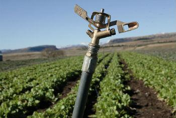 Aumento do uso de fertilizantes. Foto: Banco Mundial/John Hogg