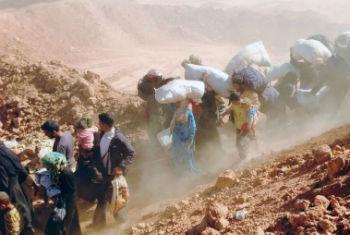 Refugiados sírios. Foto: Acnur/A. Harper