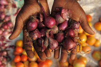 Queda nos preços dos alimentos. Foto: FAO/Daniel Hayduk
