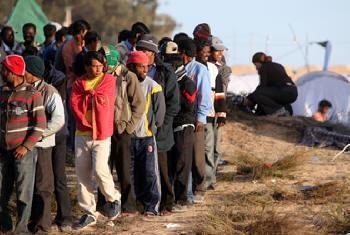 Refugiados líbios. Foto: ONU