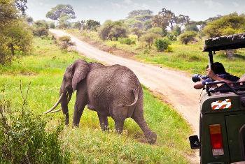 Turismo em África. Foto: OMT