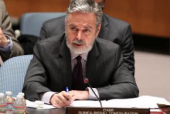 Antonio Patriota nesta quinta-feira no Conselho de Segurança. Foto: ONU/Devra Berkowitz