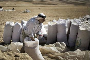 Foto: FAO/Marco Longari