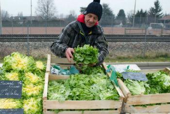 OMS chama atenção para a importância de garantir alimentos livres de contaminaçãoFoto: OMS/V. Martin