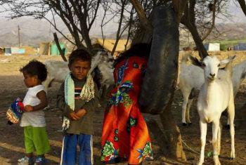 Crianças e animais em campo de refugiados no Iêmen. Foto: Acnur/H.Macleod