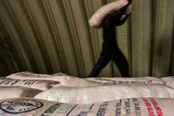 Distribuição de materiais de produção no Sudão do Sul. Foto: FAO/J. Belgrave