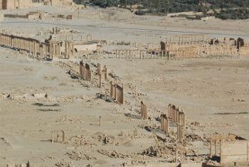 Relatos de confrontos perto de Palmyra, Síria. Foto: Unesco