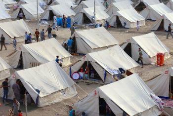 Imagem de um campo de deslocados internos em Al-Jamea, Bagdá, onde 97 famílias da província de Anbar acharam abrigo temporário. Foto: ©Unicef/ Iraq/2015/Khuzaie