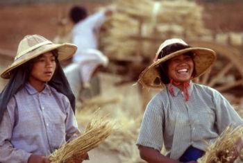 Investimentos serão feitos em áreas rurais e urbanas. Foto: FAO