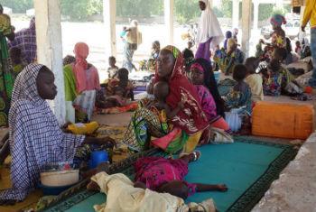 Refugiados nigerianos nos Camarões. Foto: Acnur/D. Mbaoirem