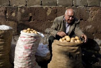 Homem vende batatas em um mercado na Armênia. Foto: FAO/ Johan Spanner