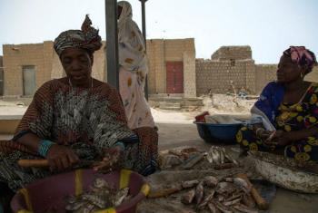 Agências humanitárias querem US$ 354 milhões para prestar auxílio aos malianos mais vulneráveis. Foto: Minusma/Harandane