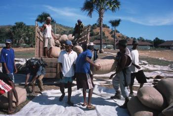 Trabalhadores carregam sacos de café. Foto: Banco Mundial