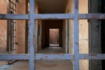 Clifford Dimba cumpriu doze meses da sentença de 18 anos. Foto: ONU/Marco Dormino