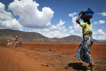 Muitos desastres naturais estão a contribuir para a insegurança alimentar