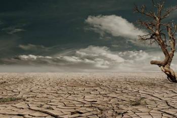 As mudanças climáticas têm um grande impacto na agenda de desenvolvimento da África Subsaariana.Foto: Pnuma