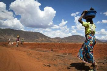 Calcula-se que 261 mil agricultores sejam afetados pela seca em Moçambique. Foto: FAO/Eliza Deacon