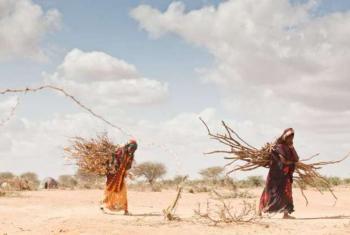 Ban Ki-moon destacou que África é particularmente vulnerável.Foto: ONU.