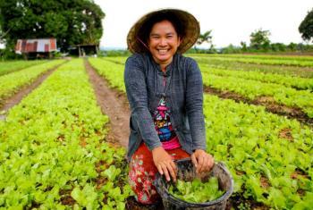 Apoio aos pequenos agricultores e maior participação nas negociações do clima. Foto: Ifad/GMB Akash