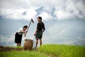 Agricultores em área montanhosa no Vietnã. Foto: ONU/Kibae Park