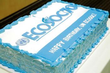Conselho Econômico e Social da ONU comemora 70 anos. Foto: ONU/Evan Schneider
