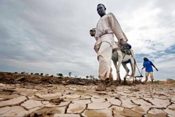 A seca pode reduzir para metade a produção agrícola até 2020. Foto: ONU/Albert González Farran