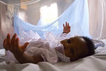 """Segundo a OMS, repelentes e redes mosquiteiras são """"melhores medidas de prevenção"""" à picada do mosquito. Foto: Banco Mundial/Arne Hoel"""