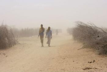 Pelo menos 50,5 milhões de pessoas foram afetadas por 32 secas intensas em 2015.Foto: Irin/Jaspreet Kindra