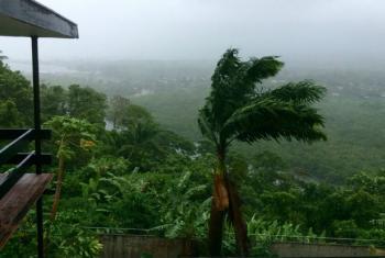 Suva, Fiji. Foto: Unicef/Clements
