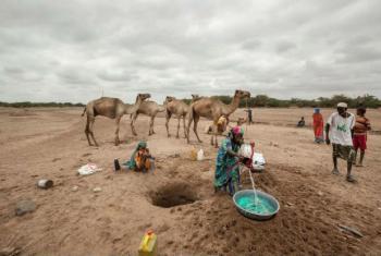 Crise ultrapassou as capacidades para ser enfrentada pelos recursos de comunidades e das autoridades.Foto: PMA/Petterik Wiggers