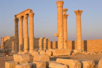 Sítio de Palmira na Síria. Foto: Unesco/F. Bandarin