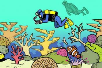 O guia tem como objetivo ajudar a proteger a biodiversidade marinha no sul e sudeste da Ásia.Imagem: Pnuma