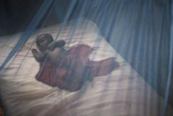 Redes mosquiteiras para evitar a transmissão da malária. Foto: Acnur/Sarah Hoibak