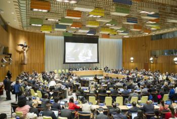 Terceiro dia de diálogos no Conselho de Tutela. Foto: ONU/Rick Bajornas