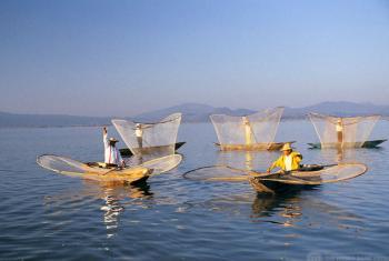 Barcos de pesca no México. Foto: Banco Mundial/Curt Carnemark